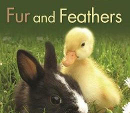 KINGFISHER READERS: FUR AND FEATHERS (LE