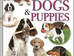 WONDERS OF LEARNING: DOGS AND PUPPY CARE