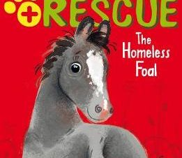 THE HOMELESS FOAL (ANIMAL RESCUE)