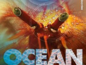 THE INVISIBLE WORLD OF OCEAN LIFE