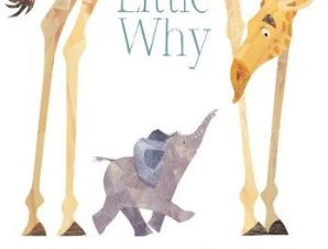 LITTLE WHY